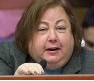 Rep. Liz Krueger (D-NY)
